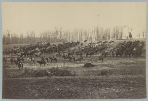 A Union artillery battery with its horses. (Courtesy of the Library of Congress)