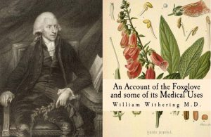 William Withering and his book on Foxglove